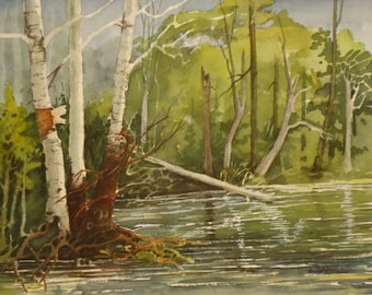 Wolf River, Original Watercolor, Prints Available, 5x7 print with 8x10 matching mat. 20.00 each, Includes tax,shipping and handling.