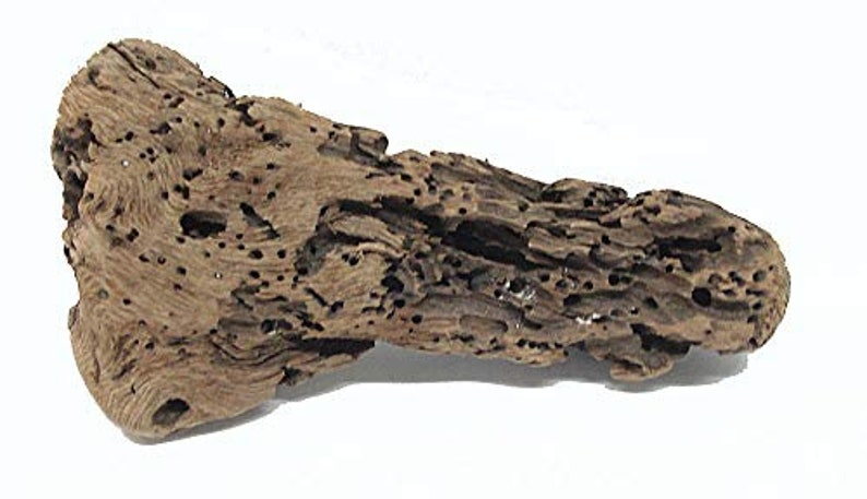 Point St George CA Driftwood #24