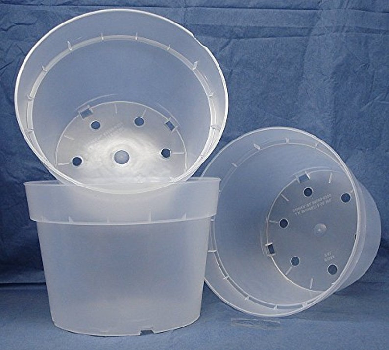 Clear Plastic Pot For Orchids 7 1 2 Inch Diameter Quantity 3 Etsy