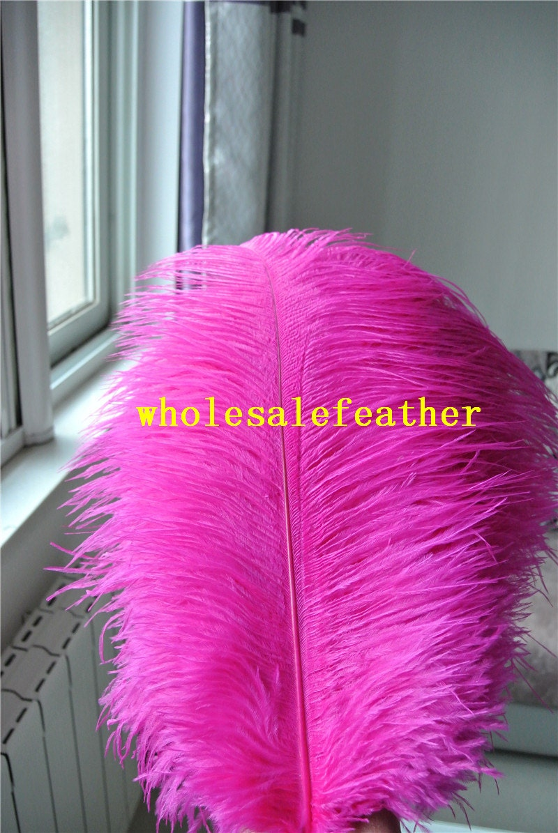 100 pcs hot pink 18-20inch ostrich feather plumes fuchsia for | Etsy