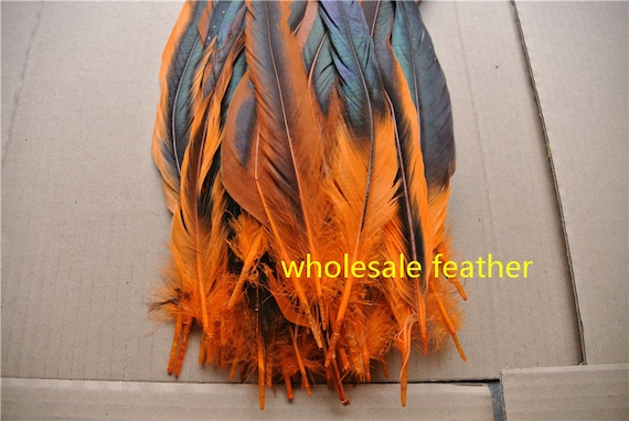 FEATHERS  10 X  Orange 2 Tone  ROOSTER COCK  TAIL FEATHERS UK Seller  Free p/&p