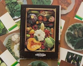 Vintage recipe cards Food photography Vegetable recipes Vintage cook book Soviet recipes
