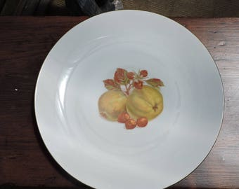 Winterling Roslau Large Serving or Decorative Wall Plate Bavaria Germany Fruit Nuts Gold