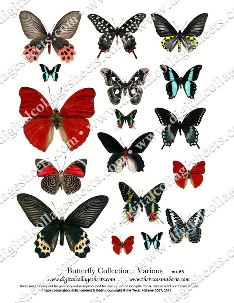 Butterflies Black & Red Digital Collage Sheet Wings Instant image 0
