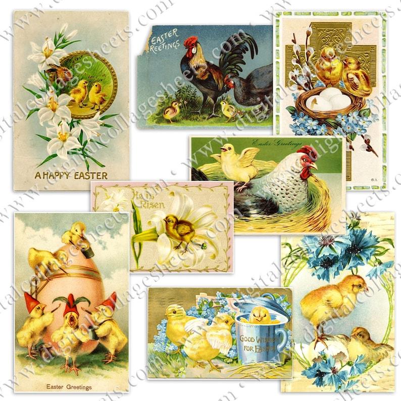 Easter Postcards Vintage Chicks Printable Digital Collage image 0
