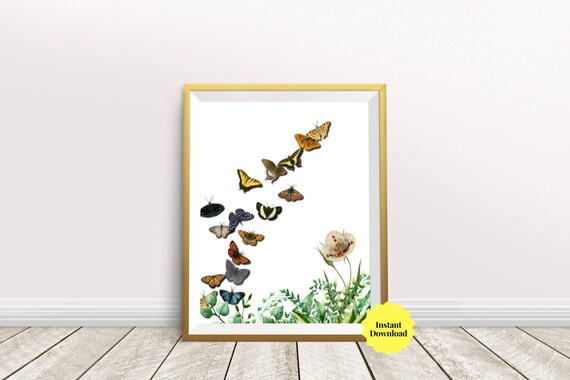 Butterfly Wall Art Design For Bedroom