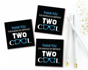 Two Cool Birthday Thank You Tags - 2nd Birthday Favor Tag -  INSTANT DOWNLOAD