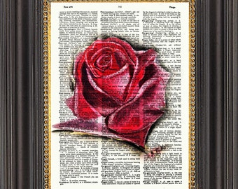 Red Rose, Rose Wall Art, Rose Watercolor Painting, Rose Print on Antique Dictionary Paper, Rose Art Print, Rose Print on Dictionary Page