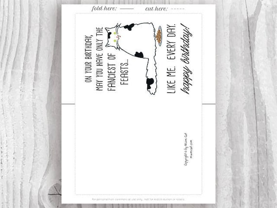 Funny Cat Birthday Cards Printables Funny Black And White Etsy