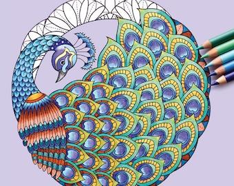 Adult Coloring Book - Coloring Bird Mandalas - Signed Copy w/ Bonus PDF