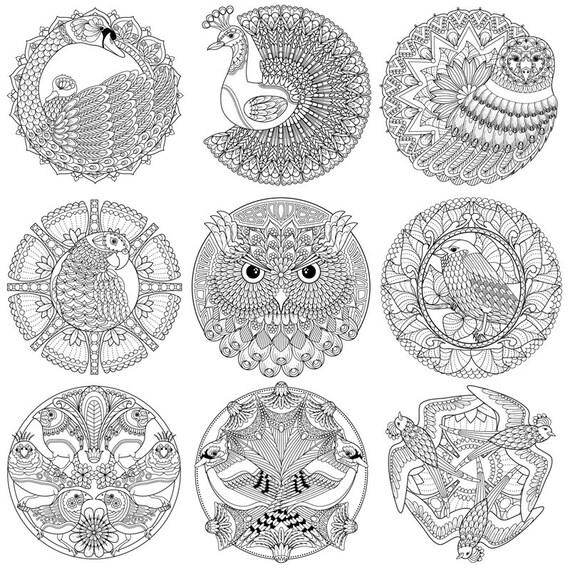 Mandala Kleurplaten Vogels.Volwassen Kleurboek Kleurplaten Mandala S Van Vogel Ondertekend Exemplaar W Bonus Pdf