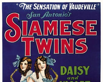 Siamese Twins, 1931. Vintage Poster Reproduction Print. Vaudeville, Circus, Sideshow, Curiosities, Oddities, 1930s, 30s, Retro, Poster Art.