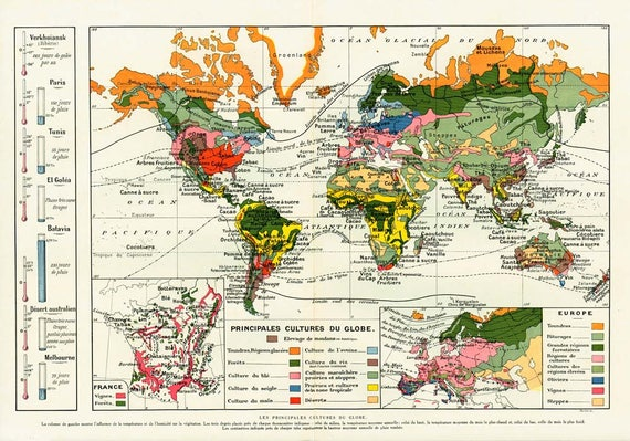 1920 Antique World MAP of Agriculture and Plants. Climate. 100 years old  chart. Vintage Larousse Map Botanical Chart.