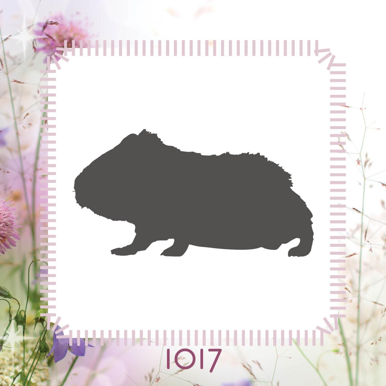 Meerschweinchen Tier Schablone wiederverwendbar Craft | Etsy
