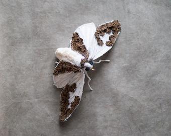 White moth, soft sculptur,Art, insect, home decor, Textil art, fabric moth, Fibre art, gift idea