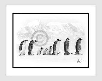 "PENGUINS IN ANTARCTICA - Original B&W Pencil Drawing - Portrait size 11.75"" x 8.25"" - Mount (matte) size 14"" x 11"" - Signed - bird art"
