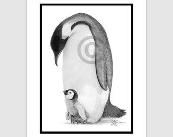 "EMPEROR PENGUIN - Original B&W Pencil Drawing - Portrait size 11.75"" x 8.25"" - Mount (matte) size 14"" x 11"" - Signed - animal bird art"