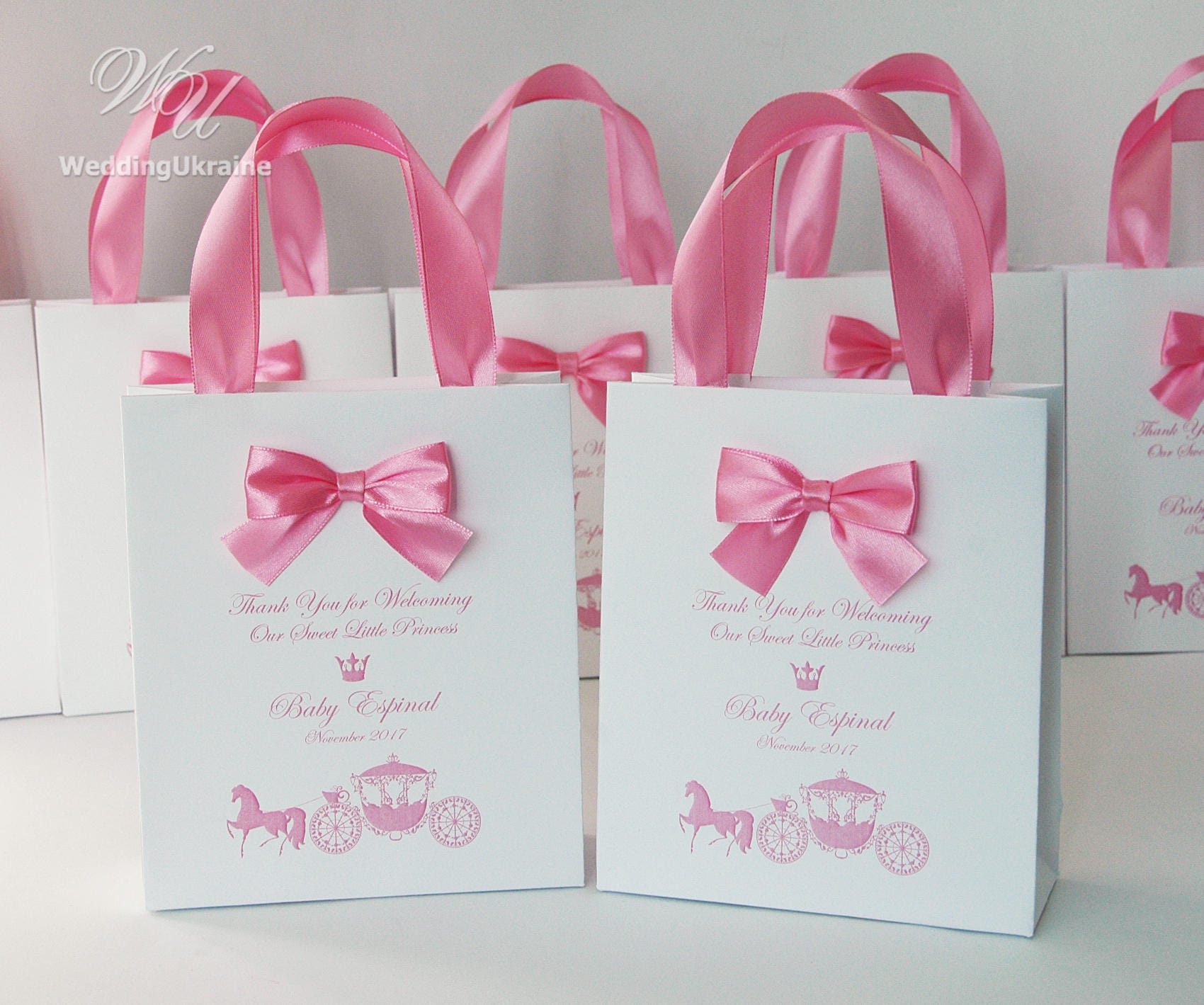 Baby shower party favor bags Elegant Welcome Bag with bow and