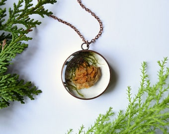Bracket mushroom necklace - real fungi pendant