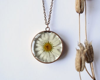Ox-Eye Daisy Pendant - Real dried flower copper necklace - patience