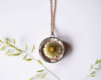 Paper Daisy (Straw flower, Everlasting Daisy) Pendant - Real dried flower copper necklace - childhood, innocence, purity