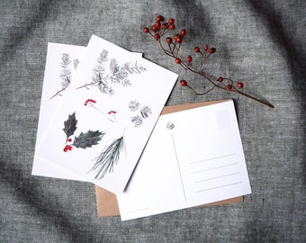 Set of 3 festive botanical christmas cards