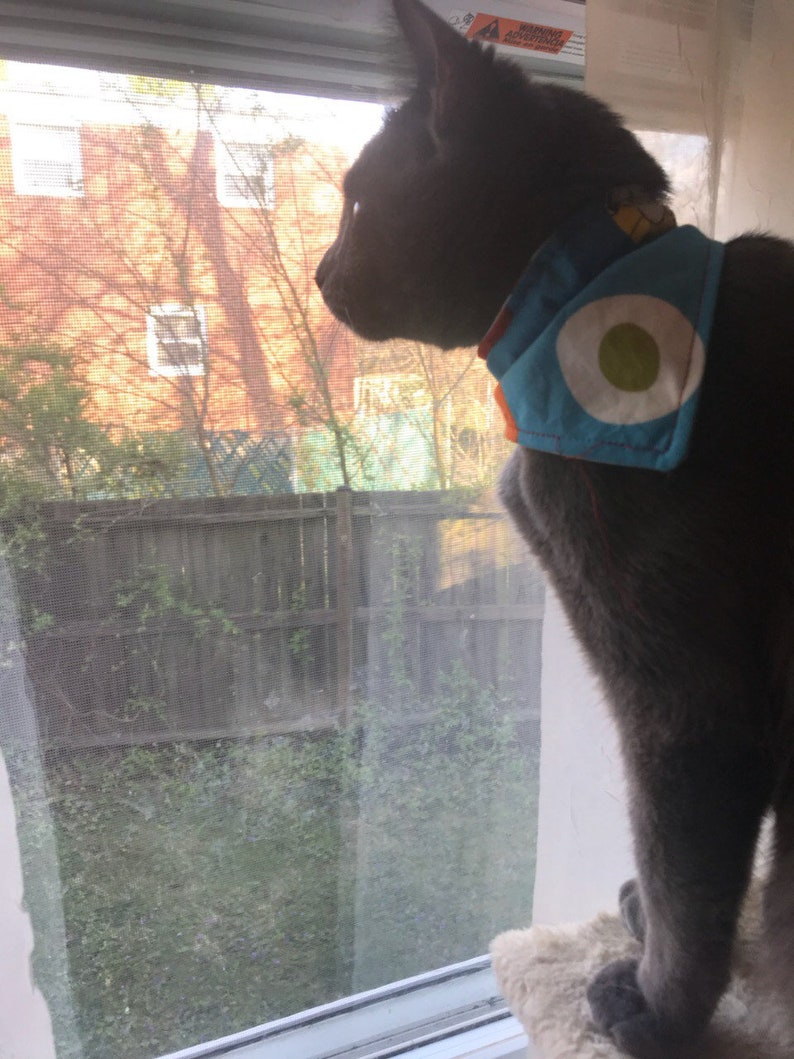 dog collar  cat collar  Personalized Monogrammed Over the collar pet  bandana cat bandana dog bandana