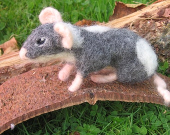 Needle felted rat. Needlefelt rat. needle felted animal. Soft sculpture rat. Soft sculpture animal. Gray and white rat. Needle felted rat.