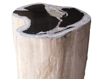 Stupendous Petrified Wood Stool Etsy Gmtry Best Dining Table And Chair Ideas Images Gmtryco