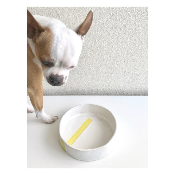 VIP Dog Bowl - White with Yellow Line
