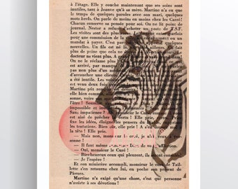 Illustration to frame Zebra which is a bubble on old novel