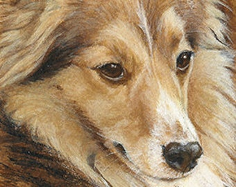 Sheltie ORIGINAL ACEO Painting Acrylic