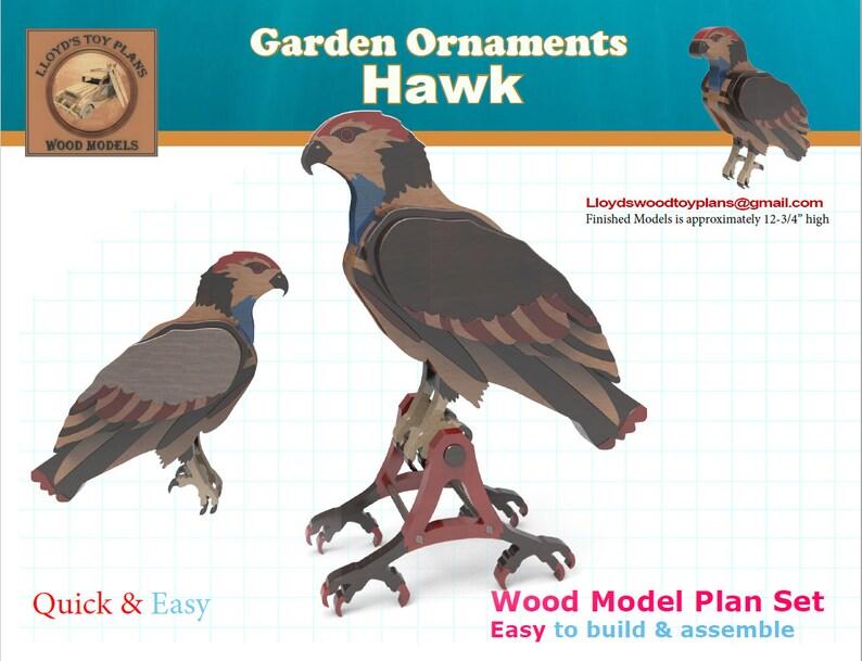 Hawk image 0