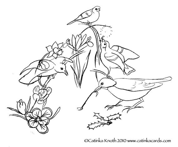 - Spring Birds Flowers Coloring Page Printable Pdf Wall Art Etsy