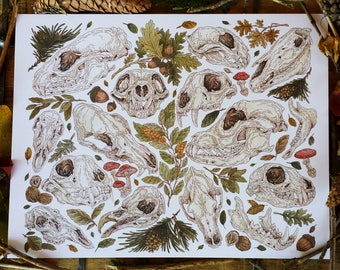 Woodland, Fauna Skull Print |  Limited Edition | Natural Cover Stock Paper