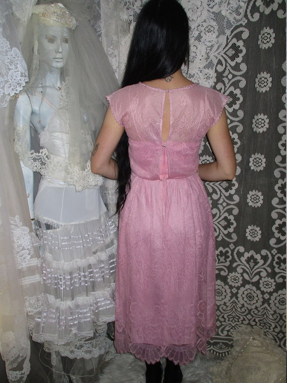 50s 60s Pink Lace Dress with Pointed Handkerchief… - image 3