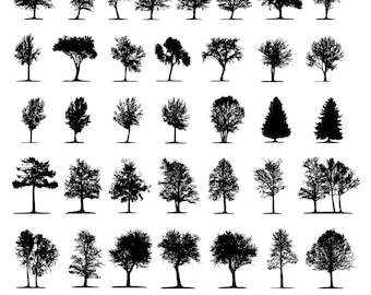 Tree Clipart Silhouettes Nature Forest Clip Art Digital Instant Download