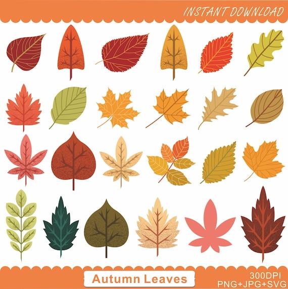 Blatt Herbst Blatt Clipart Cliparts Herbst Blatt Clipart Etsy