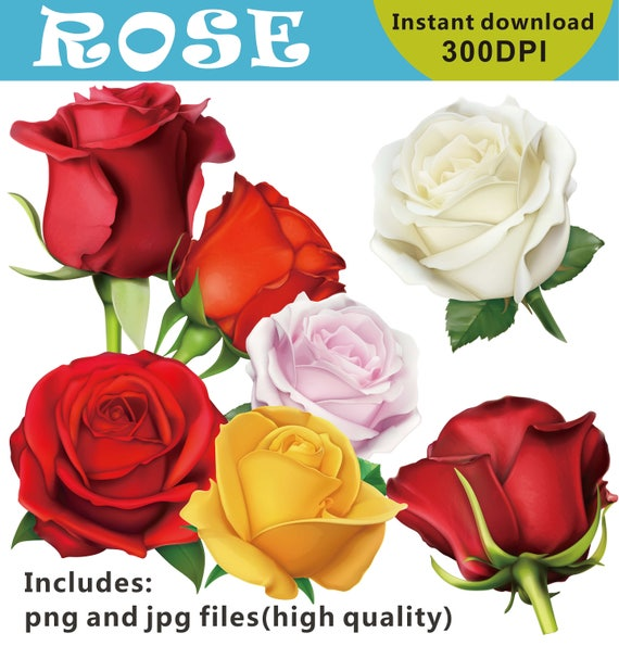 romantic clipart 14 February clipart Fashion Clipart Valentines Day Clip Art girly clipart roses clipart flowers clipart