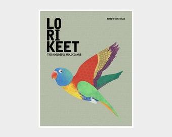LORIKEET Birds of Australia, Rainbow Lorikeet, Australiana Art Prints, Parrot Art, Australian Birds, Colourful Quirky Bird Art Illustration