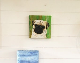 Alfie the Pug pet dog portrait