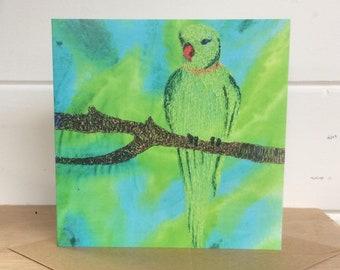Ringneck parrot card