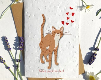 1 x Eco-Friendly Biodegradable Seed Paper plantable Valentine's and Anniversary Card adorable cute ginger short haired cat