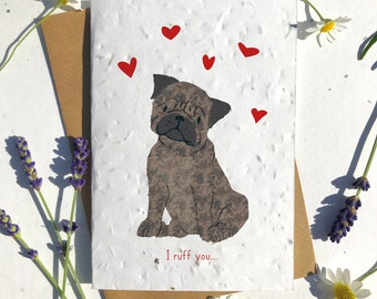 1 x Eco-Friendly Biodegradable Seed Paper plantable Valentine's and Anniversary Card adorable cute brown pug dog