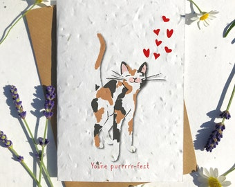 1 x Eco-Friendly Biodegradable Seed Paper plantable Valentine's and Anniversary Card adorable cute tortoise shell short haired cat