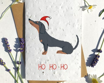Biodegradable seed paper Christmas festive season greetings card traditional duchshund black brown