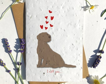 1 x Eco-Friendly Biodegradable Seed Paper plantable Valentine's and Anniversary Card adorable cute chocolate lab