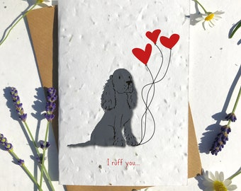 1 x Eco-Friendly Biodegradable Seed Paper plantable Valentine's and Anniversary Card adorable cute black border collie