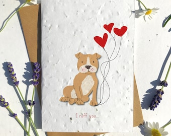 1 x Eco-Friendly Biodegradable Seed Paper plantable Valentine's and Anniversary Card adorable cute brown staff dog puppy