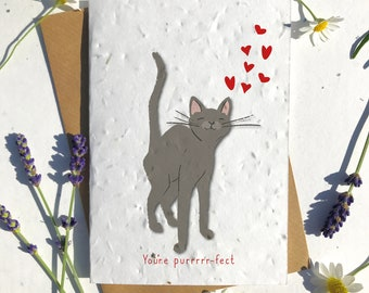 1 x Eco-Friendly Biodegradable Seed Paper plantable Valentine's and Anniversary Card adorable cute grey short haired cat